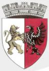 Municipiul Salonta